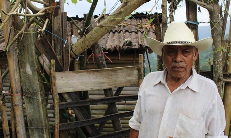 Cuetzalán luego de Grace, los damnificados entre la pobreza y el abandono