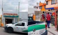 Tras la muerte de un lomito lesionado con pirotecnia en Puebla, Secretaría de Medio Ambiente denunció los hechos