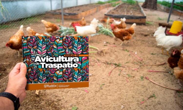 Ayuntamiento de Puebla distribuye Manuales de Avicultura y Compostaje en formato digital