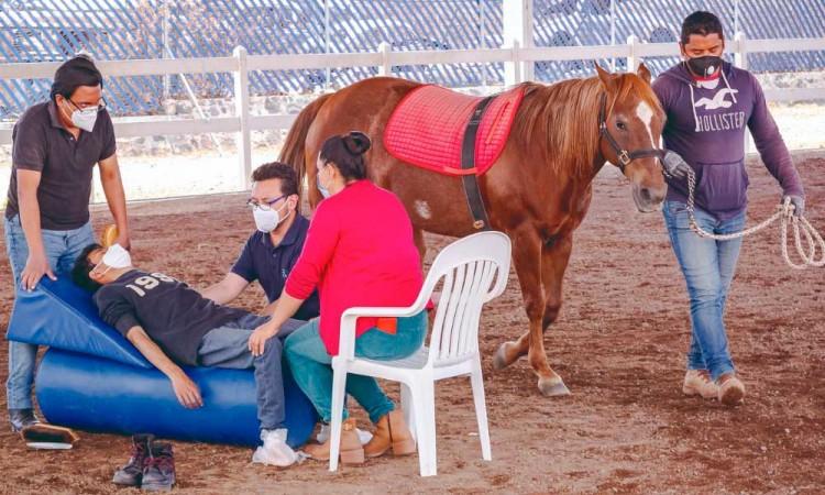 Centro Municipal de Equinoterapia y Rehabilitación Integral invita a conocer sus servicios