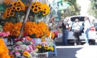Se espera un repunte de ventas de flores en los cementerios de la Capital poblana