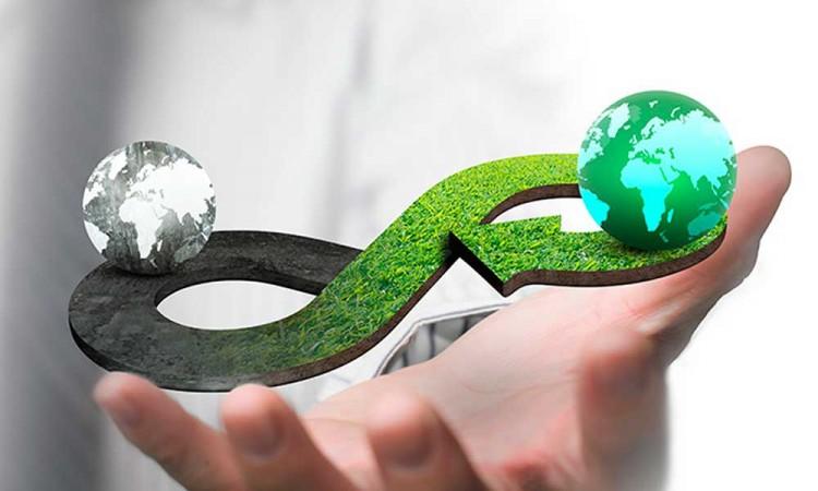 ¿Por qué la economía circular es la clave para un futuro sustentable?