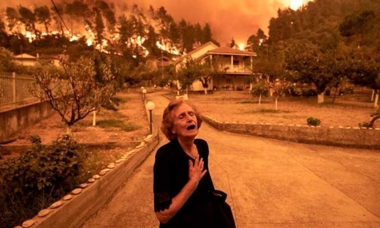 Año 2021: los incendios forestales arrasan con varias partes del mundo