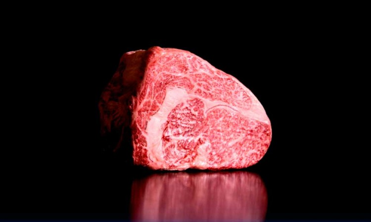 ¿La industria cárnica podría cambiar? Científicos japoneses crean la primera carne de wagyu impresa en 3D