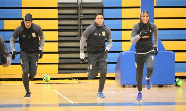 Los Tigres arrancán su pretemporada del Apertura 2020 de forma virtual