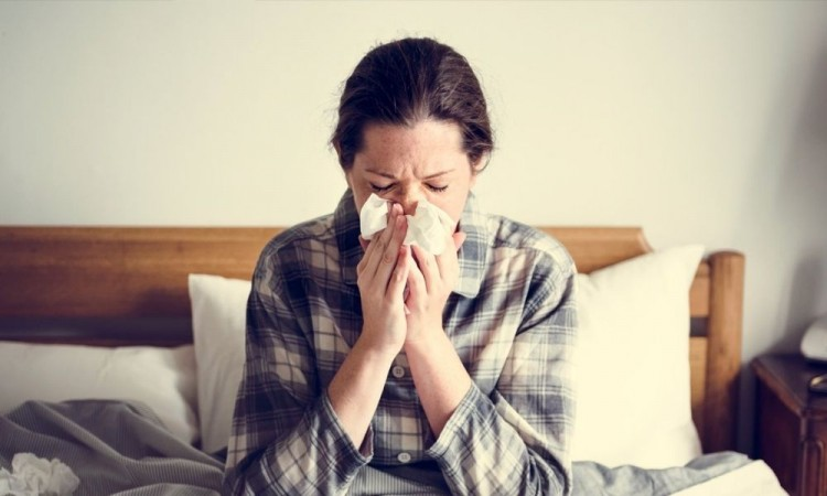 La miel puede aliviar los síntomas del resfriado común, la sinusitis, la amigdalitis, la laringitis y la gripe.