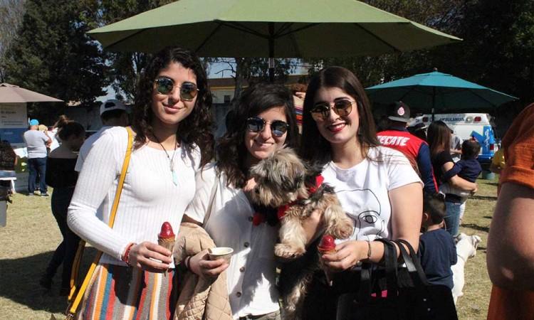 Conviven amos y mascotas en festival