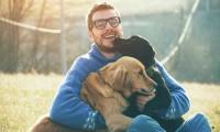 Hábitos que cambiarás con tu perro a partir de la contingencia