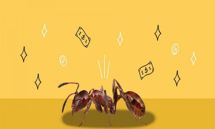 ¿Cómo disminuir gastos hormiga?