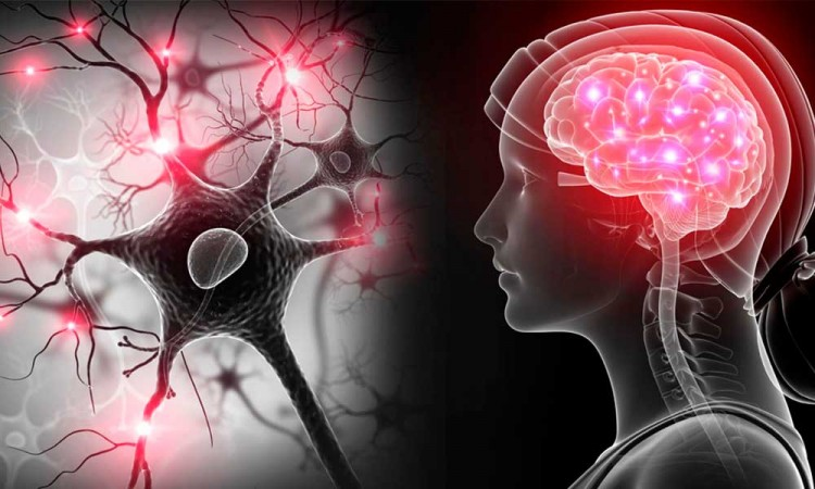 ¡Una nueva esperanza! La detección oportuna a pacientes con esclerosis múltiple podría detener la progresión de la enfermedad
