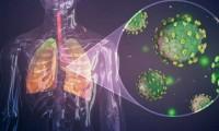 Así es como la covid-19 daña los pulmones según un estudio