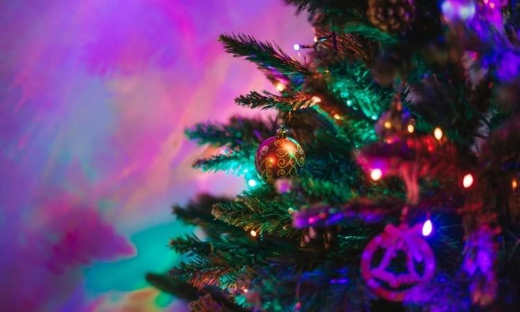 Árbol de Navidad, un obsequio para Dios