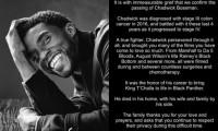 El último tuit de Chadwick Boseman se convierte en el tuit con más 'likes' de la historia