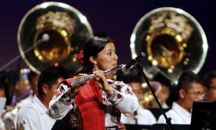 Feliz Día Internacional del Músico