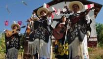 La Fonoteca preparan seminario virtual a la música en México