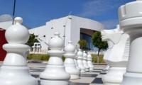 """Presentan cartelera cultural """"CCU en casa"""" del 01 al 07 de febrero de 2021"""