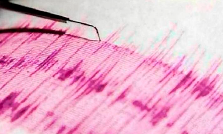 Registran sismo de 4.85 en Ecuador