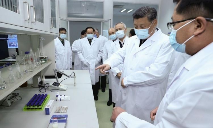 OMS confirma 187 mil muertes por coronavirus