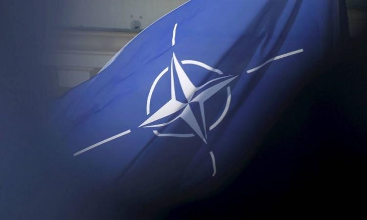 OTAN celebra acuerdo de gobierno afgano; pide aprovechar paz
