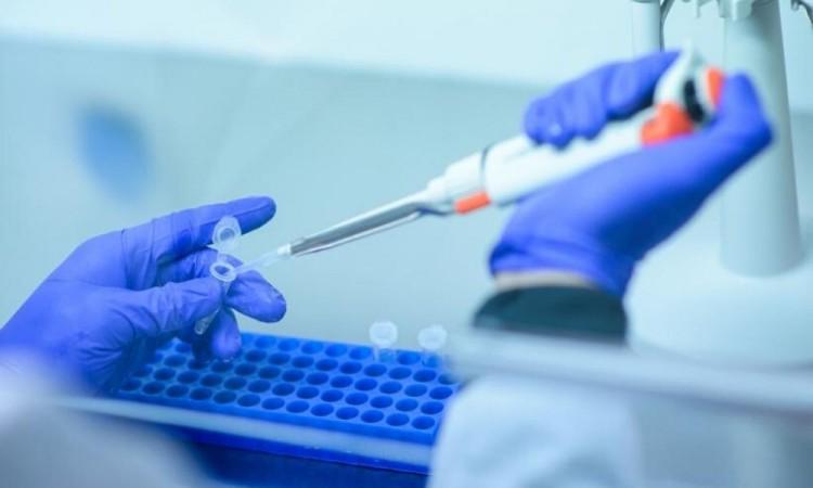 La EMA recomienda autorizar Remdesivir, un fármaco para tratar la COVID-19