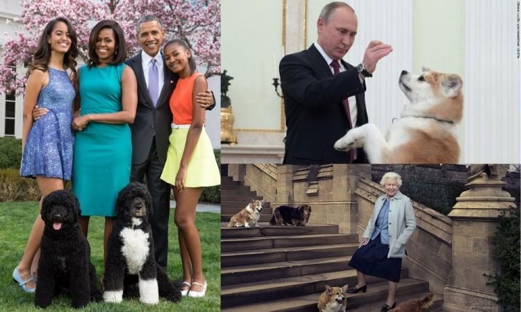 ¿Conoces a los perros más famosos de la política?