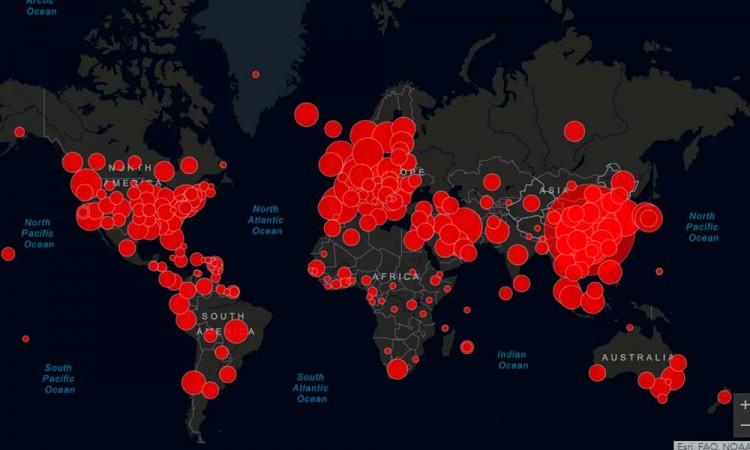 Los casos globales de COVID suben a 18,3 millones, con más de 696.000 muertos