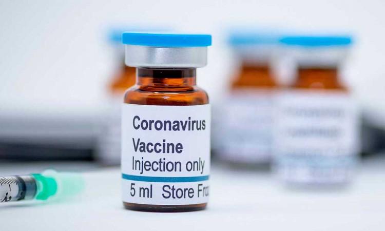 Una vacuna de la COVID-19 podría llegar en otoño, según expertos alemanes