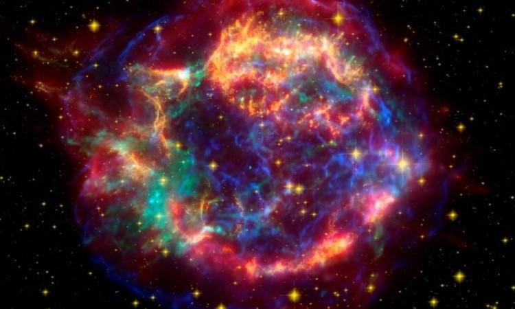 Una supernova fue la causa de la extinción del 85