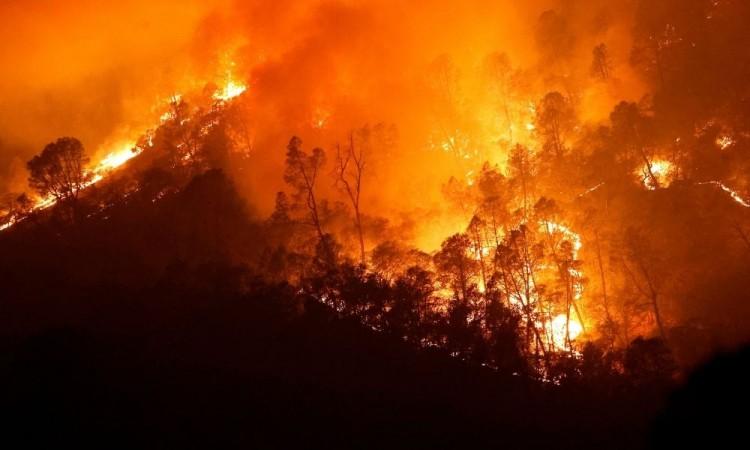 Al menos 31 personas han muerto en los incendios y se han destruido 8 mil 200 estructuras.