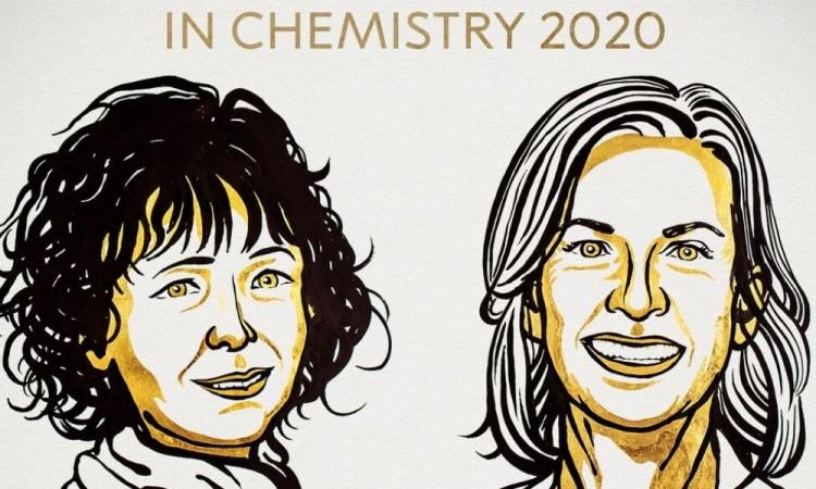 """Premio Nobel de Química para un revolucionario hallazgo casual: las tijeras Crispr y su papel en el """"código de la vida"""""""