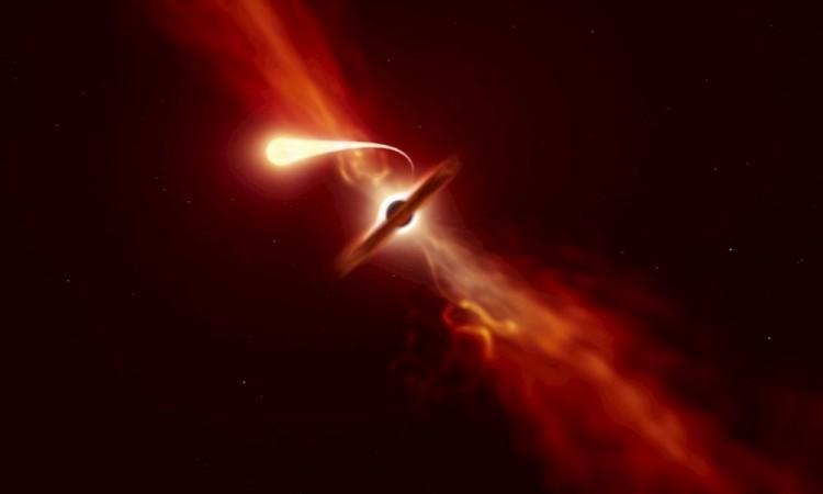 Detectan una rara explosión de luz de estrella desgarrada por agujero negro