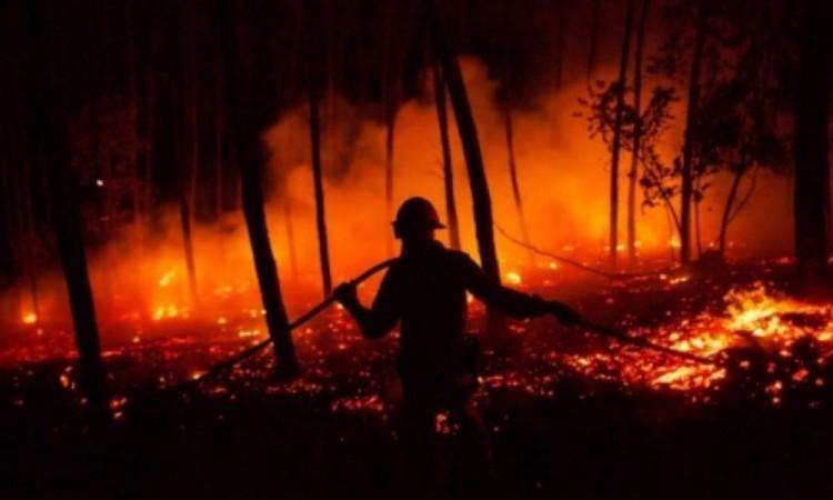 Se duplican catástrofes naturales a causa del cambio climático con más de 1,2 millones de muertes en los últimos veinte