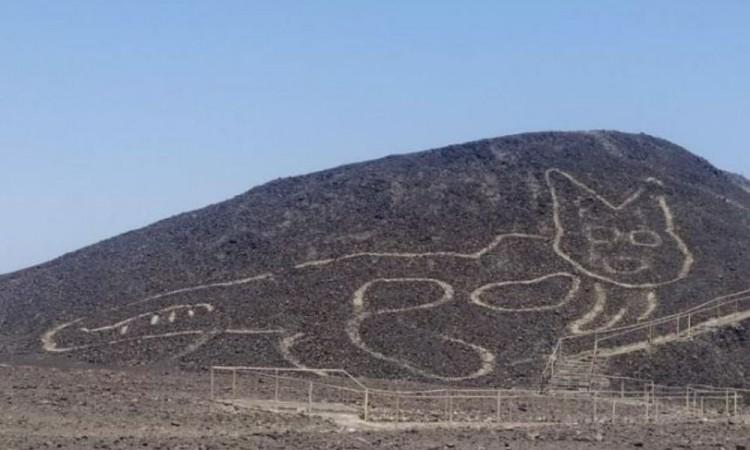 Descubren a Michi de 37 metros entre los geoglifos de Nazca