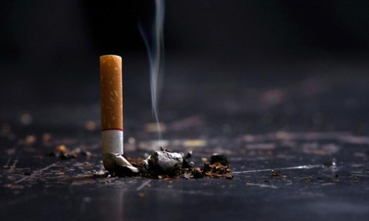 Lanzan por Whatsapp campaña para que 100 millones dejen de fumar