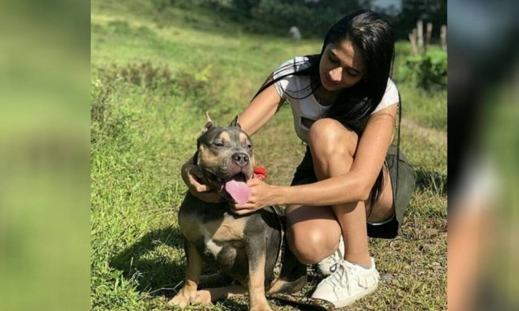 Mujer denuncia que su perro murió al tener que viajar en bodega de avión de Easyfly