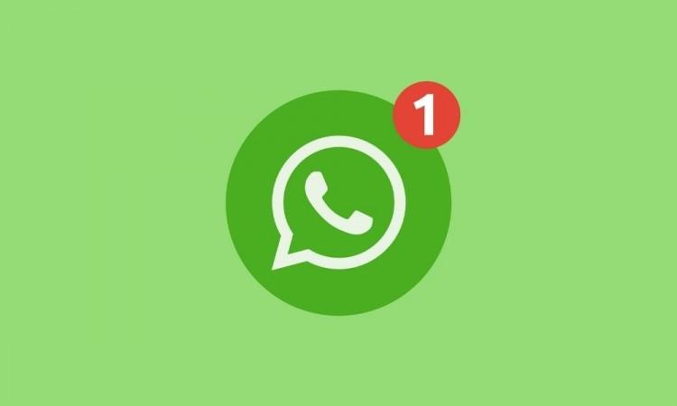 WhatsApp pospuso por tres meses los cambios en sus nuevas políticas de privacidad