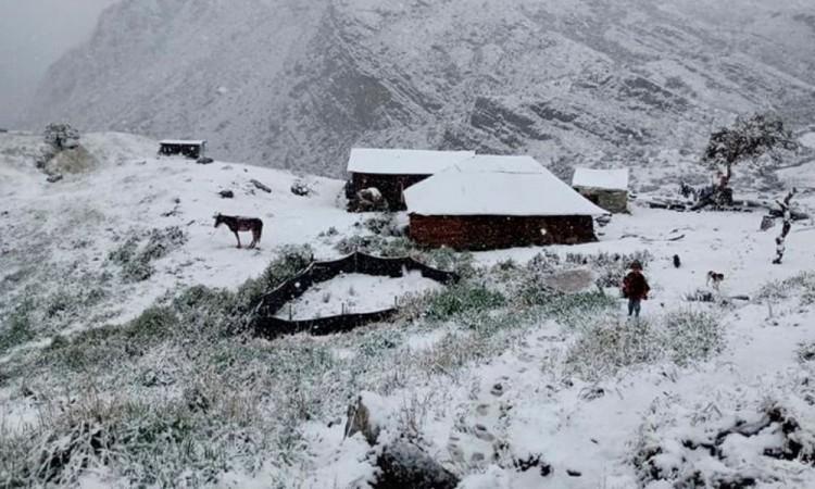 Ocurrió en el Parque Nacional Natural El Cocuy.