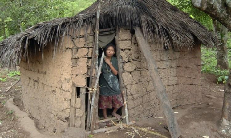 Covid-19, Eta e Iota evidencian violencia de género en Honduras