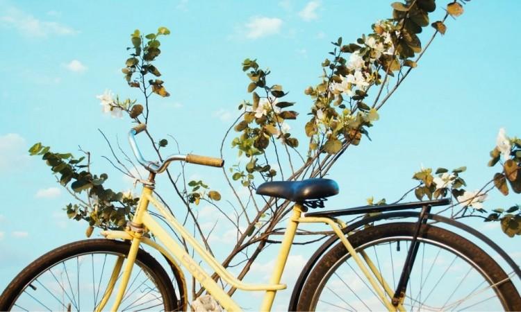 Día Mundial de la Bicicleta 2021 y su alucinante festejo