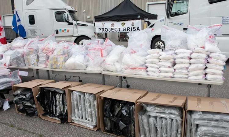 Incautan en Toronto más de una tonelada de drogas provenientes de México