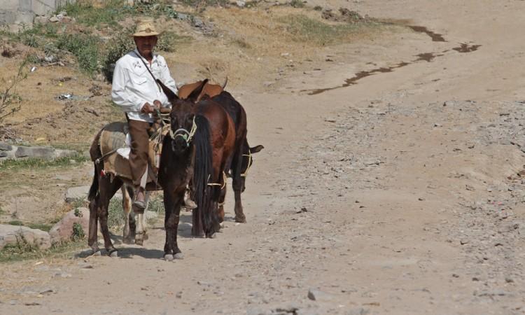 Rezaga olvido del gobierno a San José Chapultepec