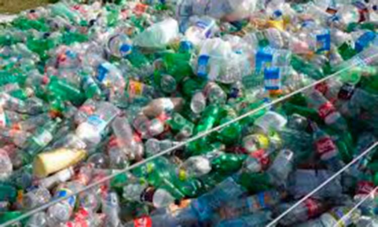 Hacen su agosto con reciclaje