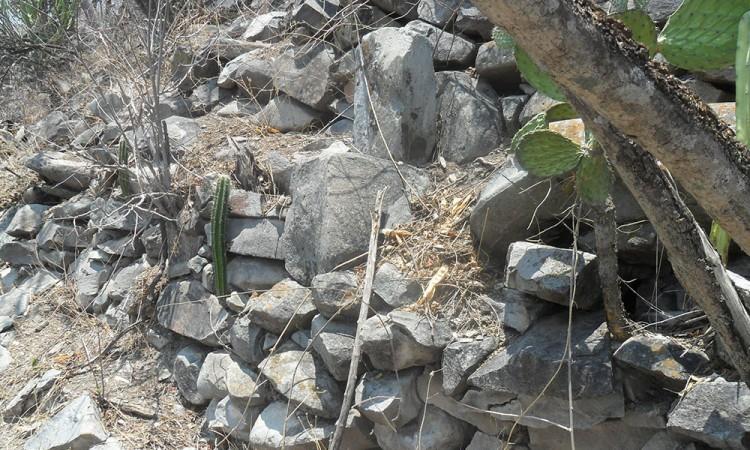Persisten saqueos en la zona arqueológica de Cerro Gordo