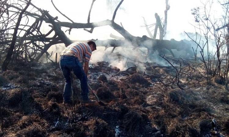 Devoran incendios forestales cerca de 3 hectáreas en Chignautla