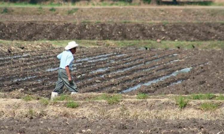 Prevén crisis de agua en Tepanco por empresas chinas
