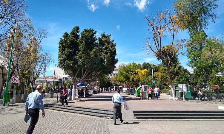 Filmarán película en Coapan y la Biósfera de Tehuacán