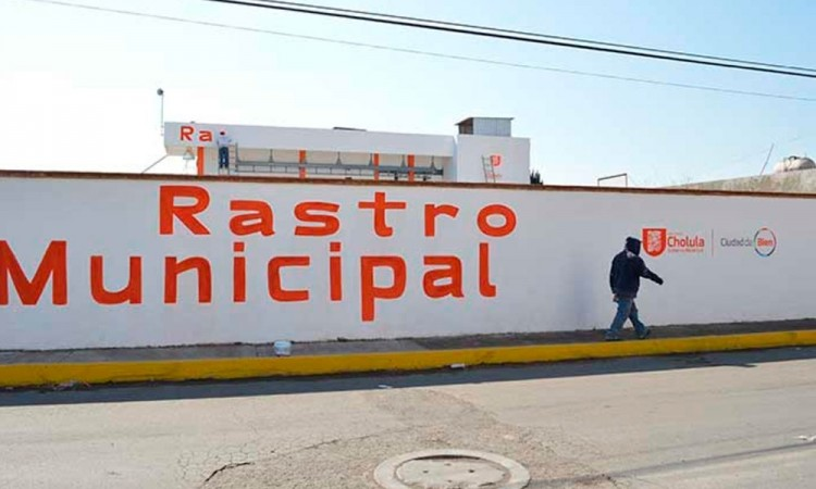 Clausuran rastro municipal de San Pedro Cholula