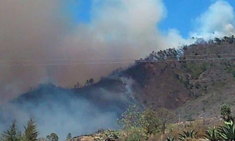 Incendio forestal consume hectáreas en cerro de Zautla