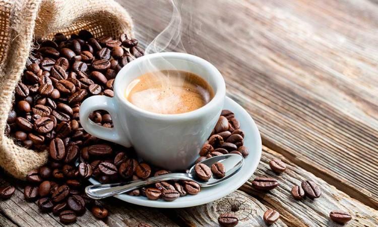 Puebla tiene potencial para producir café: Cooperativa huizilteca