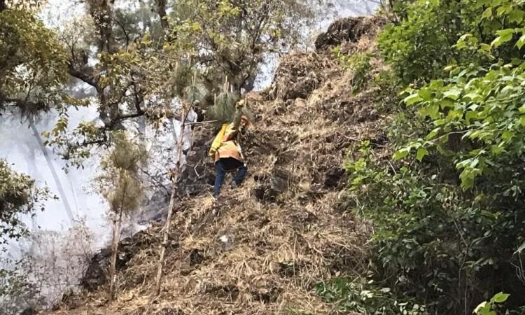 Logran liquidar incendio en Tlatempa